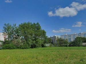 Между Сосновой аллеей и Большим городским прудом хотят устроить спортивный парк