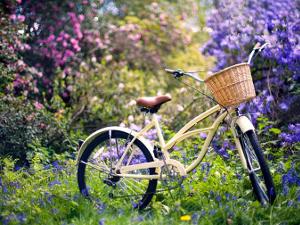 «Восточные мотивы», экологический велозаезд, Иван Охлобыстин