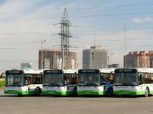 По Ленинградке запустят автобус-полуэкспресс до Белорусского вокзала