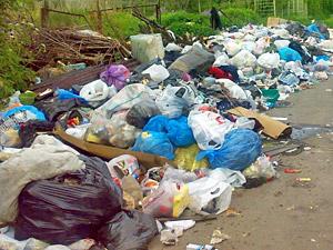 Частные мусоровозы проверят из-за стихийных свалок в Крюково