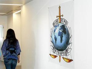 Зеленоградская полиция помогла Интерполу поймать вора