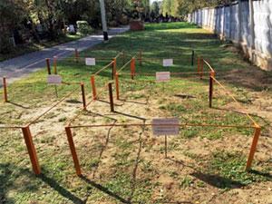 Семь участков под семейные захоронения в Зеленограде выставили на торги