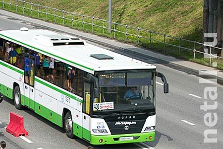 Суд прекратил дело против виновного в падении пассажира водителя автобуса