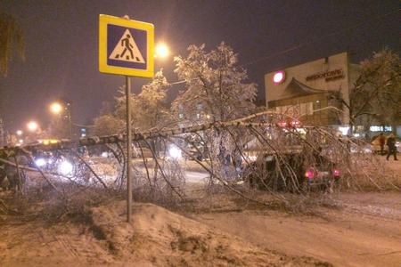 На улице Юности дерево упало на машину и перегородило проезд