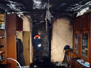 Гибелью людей на пожаре занялись следователи