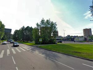 Труп бешеной лисы найден на Московском проспекте