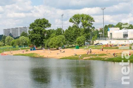 Большой городской пруд закрыли для купания