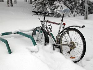 Префектура предложила выбрать места для велопарковок