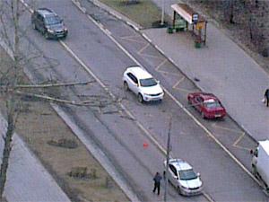 На улице Юности дерево упало на проезжавшую мимо машину