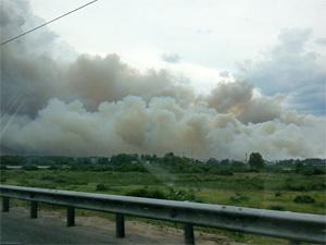 Зеленоград заволокло дымом от лесных пожаров