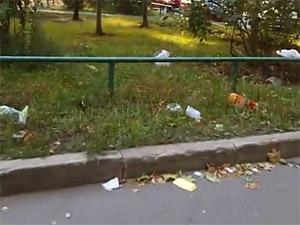 Под слоем мусора