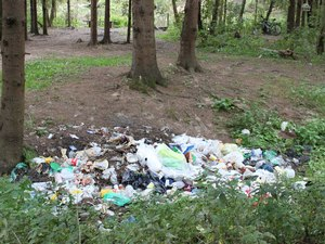 Зеленоградцев приглашают убрать мусор на речках за 16-м микрорайоном