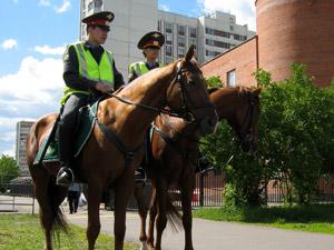 Конные патрули пробудут в Зеленограде до осени
