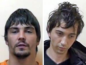 Полиция поймала серийных похитителей автономеров