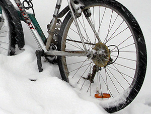 В 1-м микрорайоне поймали воров-велосипедистов
