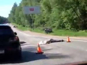 Сбившего насмерть двух человек пьяного автомобилиста освободили от наказания
