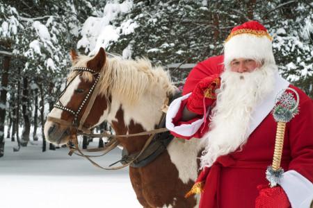 Раннее бронирование «Нового года» и «Рождества» со скидкой до 25%