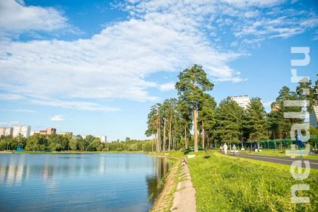 Школьное озеро покроют сетью Wi-Fi