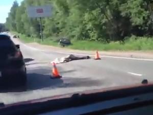 На Пятницком шоссе сбили насмерть двух пешеходов