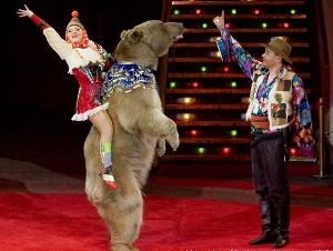 На Михайловском пруду для детей выступит медведь Степа