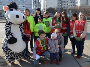 Акция «Московская зебра» прошла в Зеленограде
