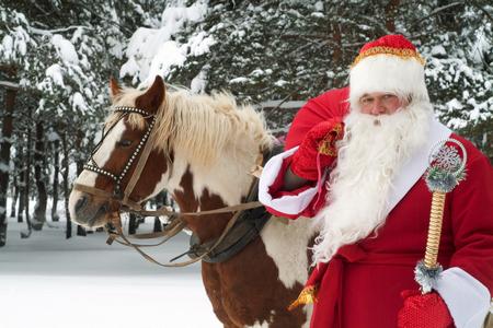 Успейте забронировать новогодние праздники в загородном отеле «Тропикана» со скидкой