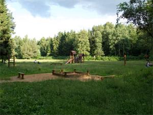 Для «лесного» ФОКа ищут другое место