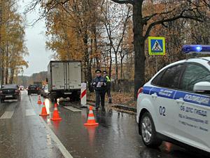 «Зебру» на улице Летчика Полагушина закроют из-за гибели пешехода