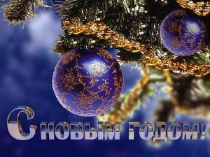 Зеленоградские новогодние каникулы
