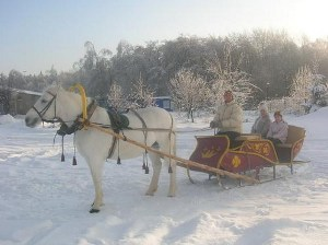 Клуб «Vsedlo.ru» приглашает на зимние катания на санях