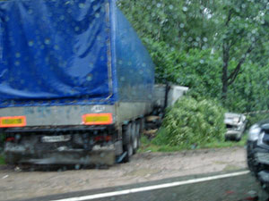 На Пятницком шоссе фура повалила на машину деревья