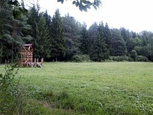 На поляне летнего кинотеатра обновят детскую площадку