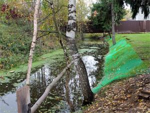Жители Фирсановки будут судиться с властями из-за потопов