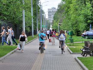 Префектура запустила голосование по велодорожкам