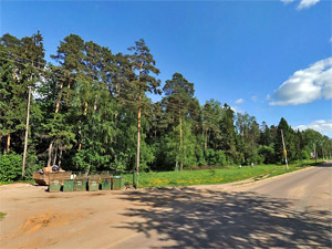 На месте леса в Менделеево хотят построить жилой микрорайон